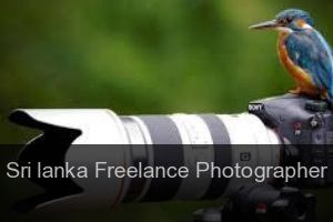 Sri lanka Freelance Photographer - Directory - List - Guide